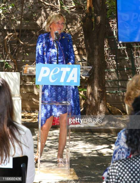 Ingrid Newkirk attends 70th birthday party for PETA President Ingrid Newkirk hosted by Anjelica Houston at Plant Food Wine on June 30 2019 in Venice...