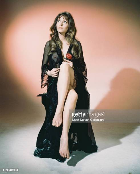 Ingrid Pitt Polish actress wearing a black lace dressing gown and holding a red rose in a studiuo portrait issued as publicity for the film 'The...