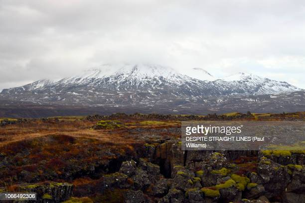 þingvellir national park, east of rekjavik in iceland - tectonic stock photos and pictures