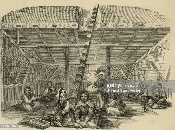 Inhabitants of Kamchatka in their winter hut Wooden ladder for access Engraving 1882