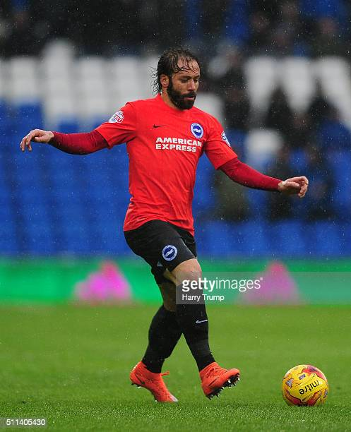 Inigo Calderon of Brighton and Hove Albion during the Sky Bet Championship match between Cardiff City and Brighton and Hove Albion at the Cardiff...