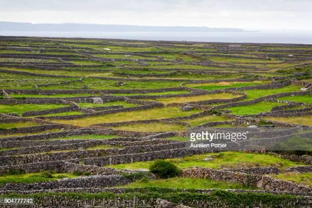 Inishmaan, panorama from Dún Chonchúir