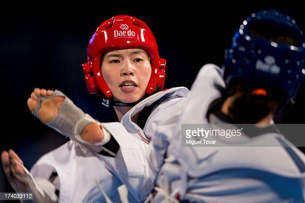 InJong Lee of Korea competes with Reshmine Oogink of Holland during the women's 73 kg combat of WTF World Taekwondo Championships 2013 at the...