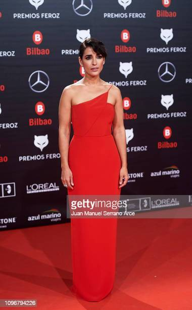 Inma Cuesta on the red carpet during the Feroz Awards 2019 January 19 2019 in Bilbao Spain
