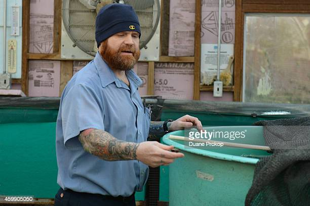 Inmate Robert Cooper checks on tilapia that is used in the aquaponics greenhouse as part of the Green Initiative at Marion Correctional Institute on...