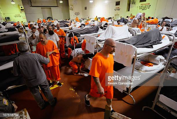 Inmates at Chino State Prison walk past their bunk beds in a gymnasium that was modified to house prisoners on December 10 2010 in Chino California...
