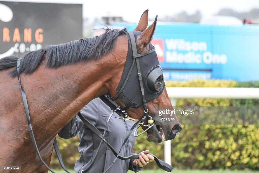 Inn Keeper after winning the Westmeath BM78 Handicap, at Terang Racecourse on April 15, 2018 in Terang, Australia.