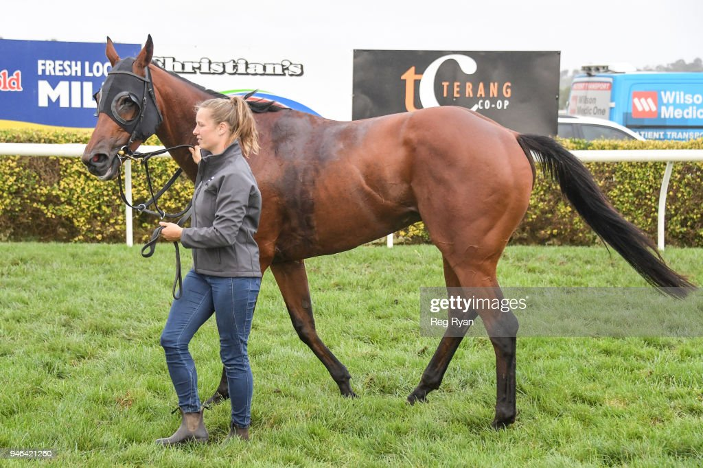 Inn Keeper after winning the Westmeath BM78 Handicap, at Terang Racecourse on April 15, 2018 in Terang, Australia.