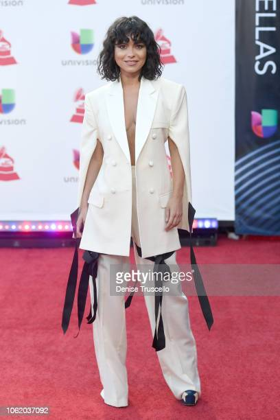 Inna attends the 19th annual Latin GRAMMY Awards at MGM Grand Garden Arena on November 15 2018 in Las Vegas Nevada