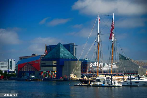 inner harbor in baltimore, maryland - baltimore maryland - fotografias e filmes do acervo