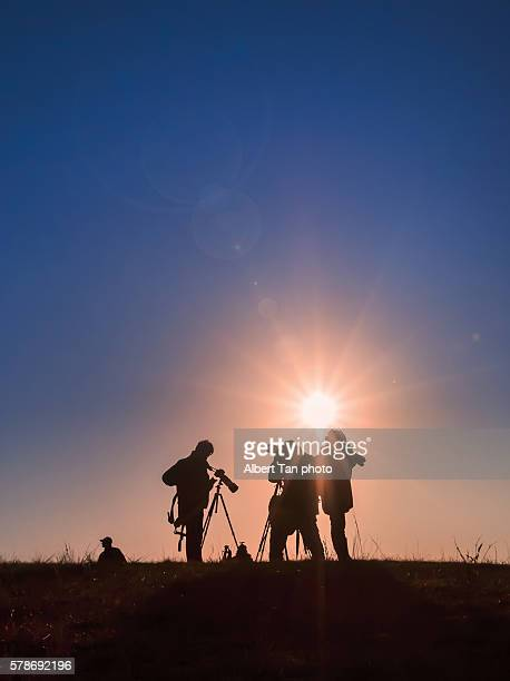 inner mongolia, tree - film crew stock photos and pictures