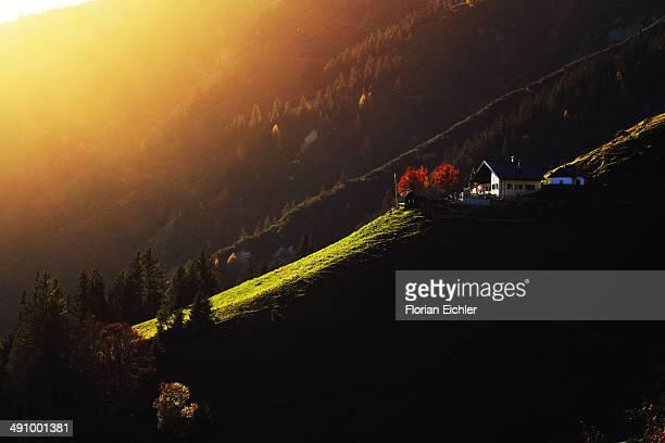 Innsbruck flare hiking afternoon golden hour backlight forest autumn fall