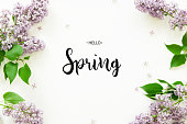 Inscription Hello Spring. Lilac flowers on white background. Spring flowers. Top view, flat lay. - Image