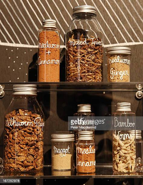 Insect spices and ingredients are displayed at the 'Insects au Gratin' exhibition at the Wellcome Collection on April 23 2013 in London England A...