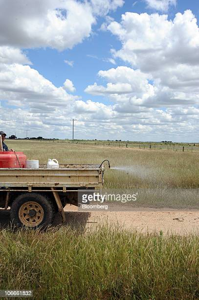 Insecticide is sprayed from the back of a farmer's truck onto the roadside soil where locusts have hatched and started hopping outside Pyramid Hill a...