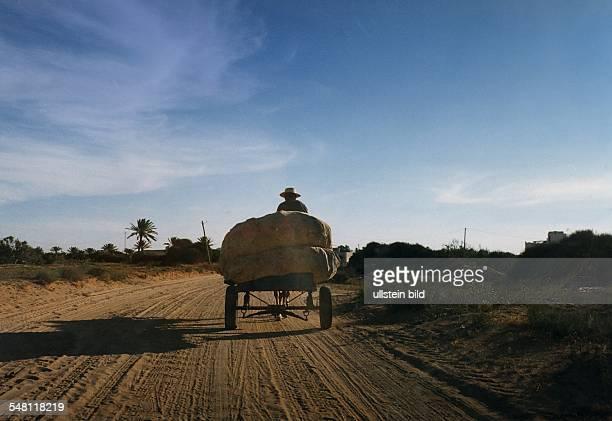 ein Bauer fährt mit seinem Wagen über eine Landstrasse 1995