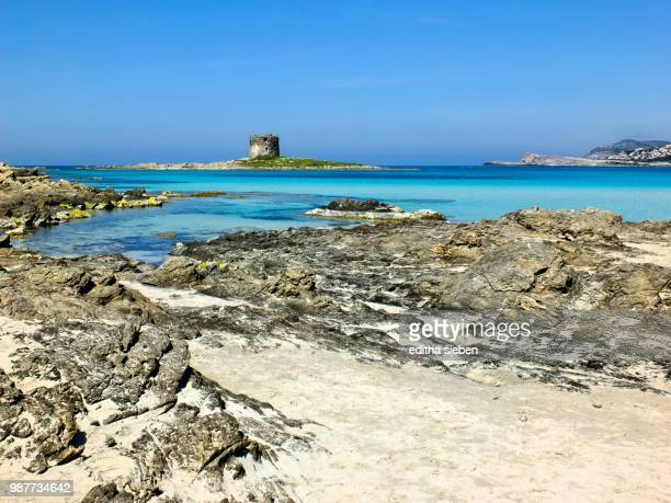 insel im meer - insel stock pictures, royalty-free photos & images