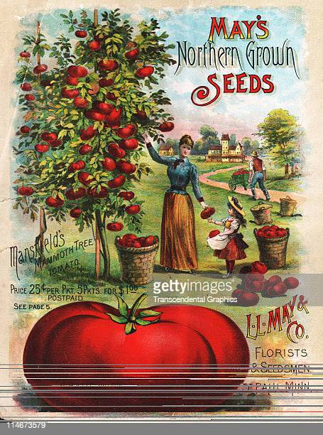 Insert poster for May's seed catalog from Shenandoah Iowa with farm scenes and produce images 1891