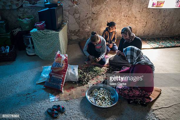 KURDISTAN Inside an unfinished school building in the town of Sharya some 20 minutes south of Dahuk The building now hosts some 70 Yazidi Kurd...