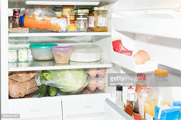 Inside fridge and the door full of food, France