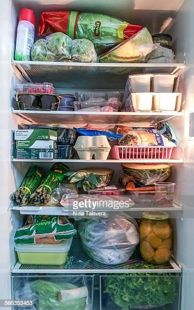 Inside fridge full of food