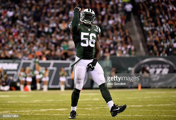 Inside linebacker Demario Davis of the New York Jets celebrates a sack against the Chicago Bears during a game at MetLife Stadium on September 22...