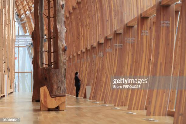 Inside the Art Gallery of Ontario redesign by Frank Gehry Italian Gallery with an installation by Guiseppe Penone The Hidden Life Within