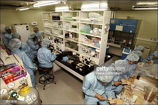 Inside The Laboratory Of Pr WooSuk Hwang A Pioneer In Human Cloning On July 6Th 2005 In Seoul North Korea Here Pr WooSuk Hwang'S Laboratory Is Open...