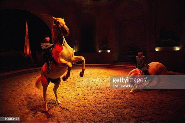 Inside the Live Horse Museum in Chantilly founder Yves Bienaime prepares for his succession the directorship will be inherited by his oldest daughter...
