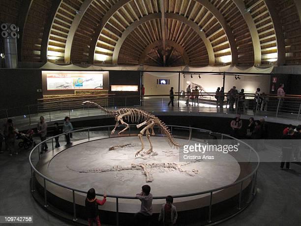Inside the Museum Jurassic of Asturias Colunga Asturias Spain october 2010