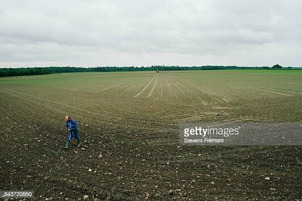 Inspecting a field of seedlings   Location StGeorgesdelaCouee France