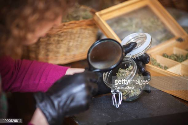 inspecting a jar filled with marijuana buds with leather gloves in rustic hemp store - stock photo - cannabis store stock pictures, royalty-free photos & images