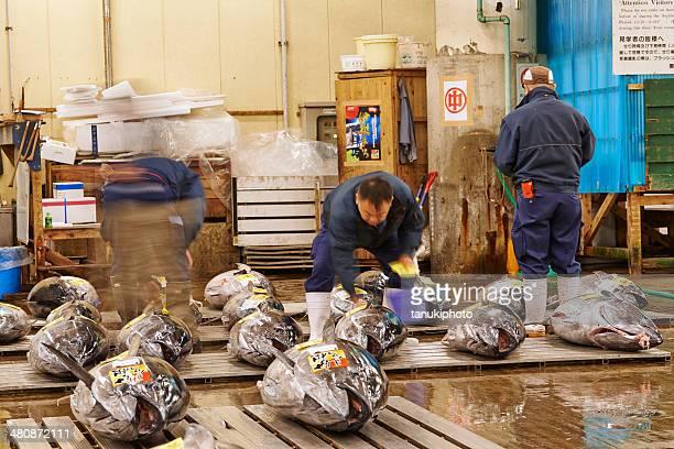 Inspeccionar el atún del mercado de pescado de Tsukiji
