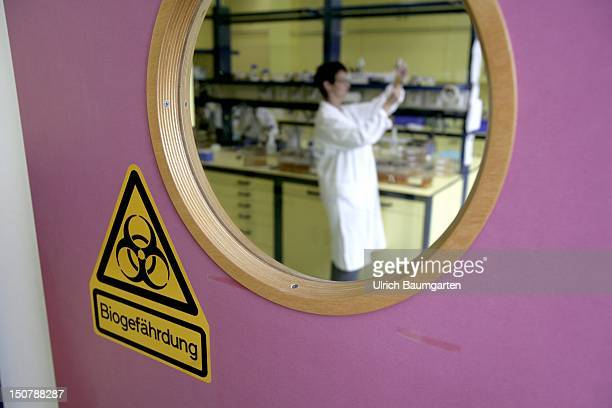 GERMANY GRENZACH Inspection of the microbiological growth of strains of bacteria in a laboratory at CIBA Specialty Chemicals in Grenzach