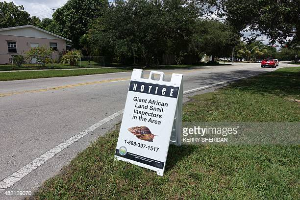 Inspectors put up street signs to alert residents that a snailhunt is underway in Miami Florida on July 17 2015 Florida plant detectives are hot on...