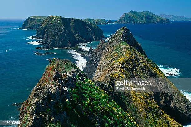 Inspiration Point, Anacapa Island in springtime