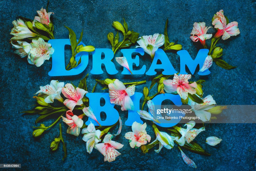 Inspirational quote with flowers : Stock Photo