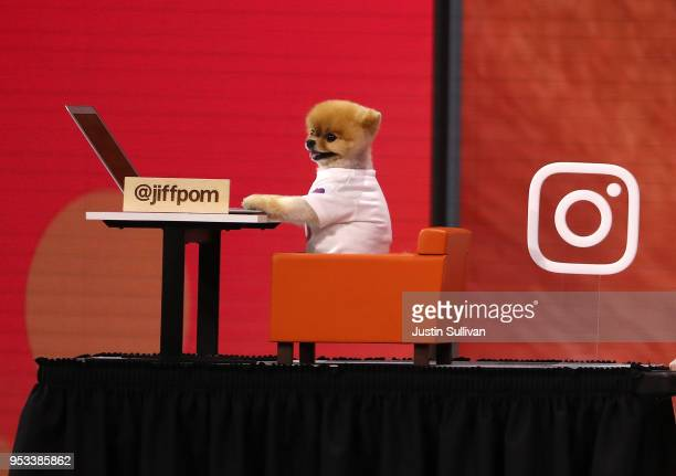 Instagram star user JiffPom appears during the F8 Facebook Developers conference on May 1 2018 in San Jose California Facebook CEO Mark Zuckerberg...