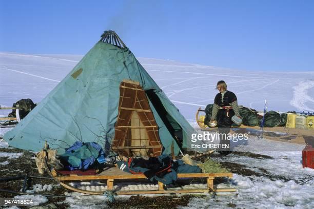Installation du campement Le ''lavvu'' la tente traditionnelle des sami reste toujours l'habitat quotidien des eleveurs de rennes de la migration de...