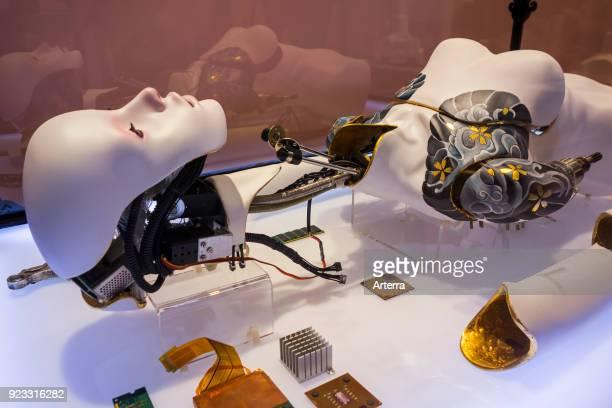 Installation The Waste techno consumer culture where body parts are disposable
