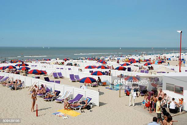 Installed on the most beautiful beach of Belgium vacationers are looking forward to a beautiful summer day at the shelter from the wind and...