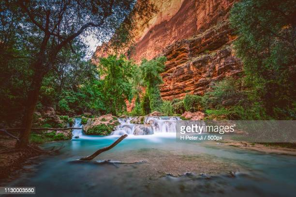 instantly made us feel at home - havasu creek stock photos and pictures