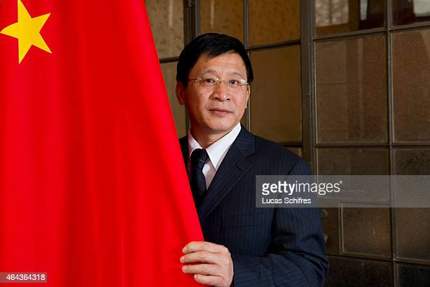 Institute of World Economy's Research Professor Zhou Yu poses for a photograph with the Chinese flag on January 05 2011 in Shanghai Academy of Social...
