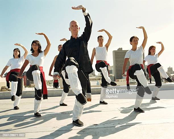 instructor leading t'ai chi class on rooftop - martial arts stock pictures, royalty-free photos & images