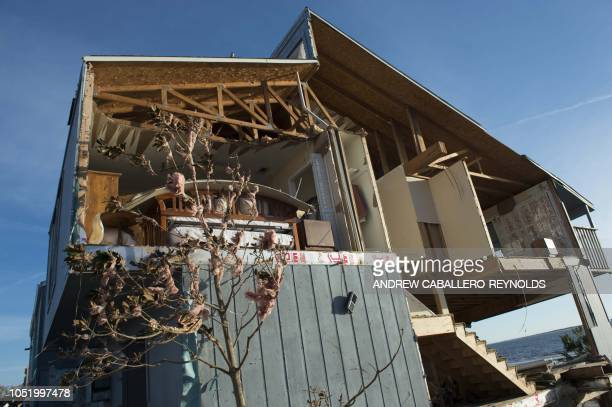 Insulation clings to a tree on a destroyed house near Port St Joe Florida on October 12 two days after hurricane Michael hit the area Rescue teams...