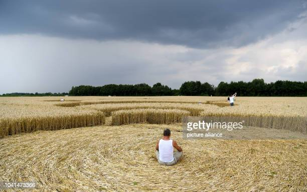 Interested parties roam crop circle in a wheat field near Mammendorf Germany 26 July 2016 The pattern has a diameter of 180 meters...
