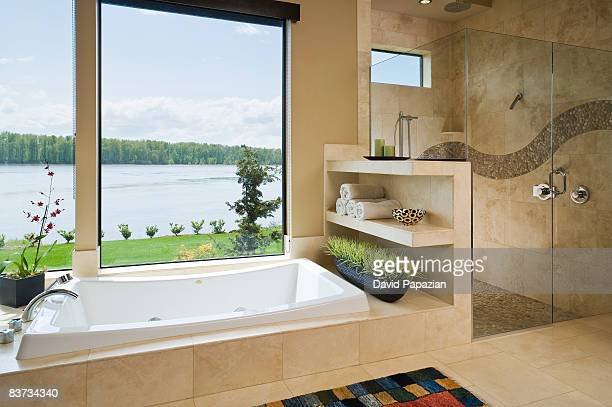 interior bathroom with view of columbia river. - toilet planter stock pictures, royalty-free photos & images