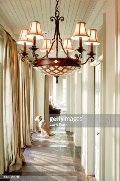 Interior Hallway of Upscale Home with a dog