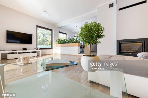 Interior modern living room