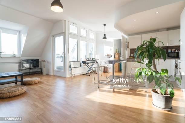interior of a modern apartment - wohnzimmer stock-fotos und bilder